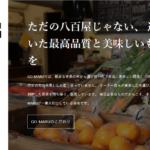 GO-MARUの公式ホームページを開設しました