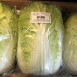 今日のお野菜。