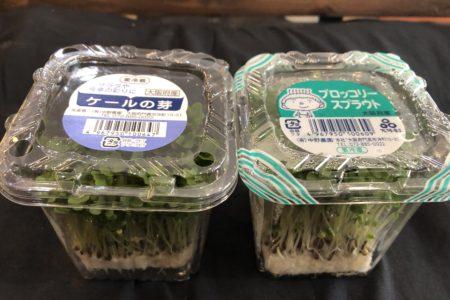 スプラウト野菜🥦
